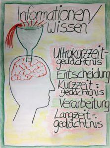 FlipChart Gehirn